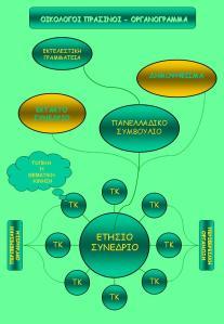 organogramma1