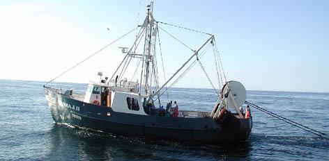171488-boat.jpg